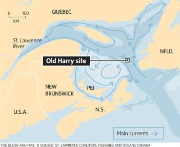 gm-infographic-old-harry